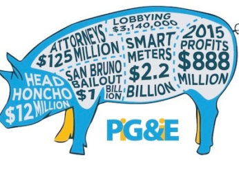 Stop PG&E Rate Hikes